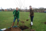 Angela Richardson MP and Cllr Matt Furniss planting a tree for Tree Week